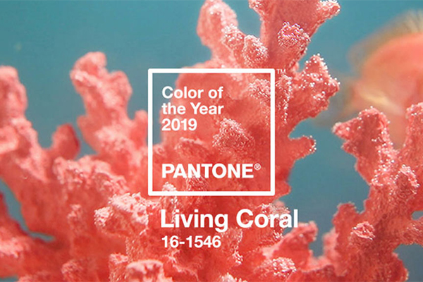 Cor do Ano Pantone - Lexus Groupe